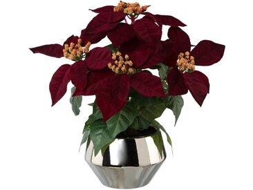Kunstblume »Weihnachtsstern«, Höhe 35 cm