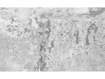 Consalnet Vliestapete »BETON«, grafisch, in verschiedenen Größen