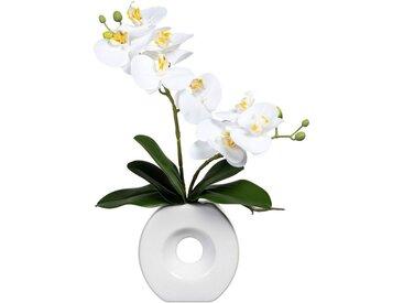 Creativ green Kunstorchidee »Phalaenopsis« Orchidee Phalaenopsis, Höhe 35 cm, in Keramikvase