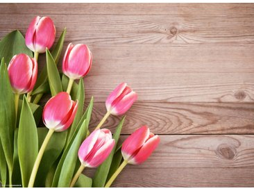 Tischsetmacher Platzset, »Tischsets I Platzsets - Rosa Tulpen - 12 Stück aus hochwertigem Papier 44 x 32 cm«, (12-St)