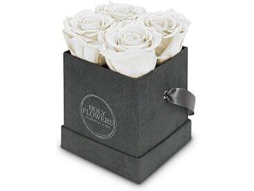 Holy Flowers Kunstblume »Rosenbox aus Samt mit 4-5 Infinity Rosen I 3 Jahre haltbar I Echte, duftende konservierte Blumen I by Raul Richter«, Höhe 10 cm