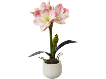Kunstblume »Amaryllis«, Höhe 50 cm, rosa, Kunststoff-Polyester, weiß-rosa