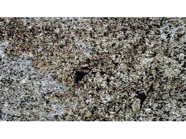 BMD SLATE LITE Dekorpaneele »Translucent Argento Auro«, TL 122x74, grau, silbergrau