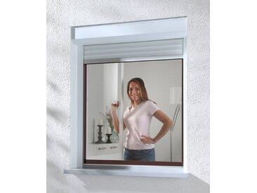hecht international HECHT Insektenschutz-Fenster »COMPACT«, braun/anthrazit, flächenbündig, BxH: 100x120 cm, grau, Fenster, 100 cm x 120 cm, anthrazit