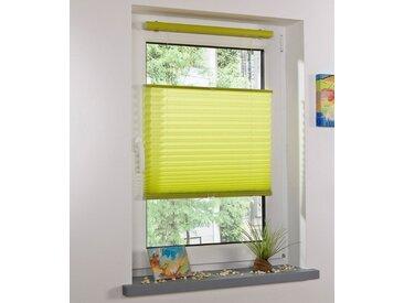 Liedeco Plissee »Klemmfix-Thermo-Plissee«, Lichtschutz, ohne Bohren, verspannt, grün, apfelgrün