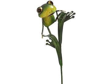 Dehner Gartenstecker »Dekostab Frosch Vincente, 20 x 101 x 19 cm, Metall«