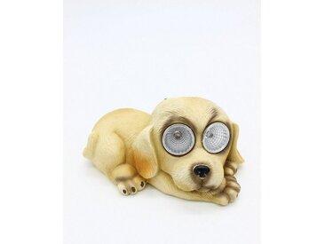 JOKA international Dekoobjekt »Solarleuchte Hund«, Solarleuchte Hund