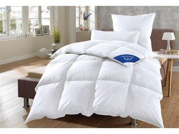 Excellent Daunenbettdecke, »Komfort«, warm, Füllung: 60% Daunen, 40% Federn, Bezug: 100% Baumwolle, (1-tlg)