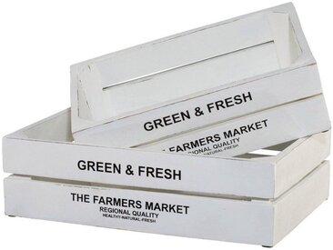 Creativ home Kiste »Green&Fresh«, 2er Set