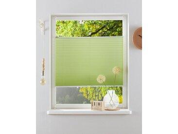 my home Plissee »Laholm«, Lichtschutz, ohne Bohren, verspannt, im Fixmaß, grün, hellgrün