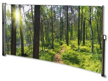 Seitenmarkise Wald - Foto Windschutz Sichtschutz Links 160 x 300 cm