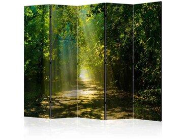 Leinwand Paravent mit Wald Motiv bei Sonnenschein 225 cm breit