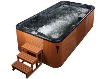 AWT Swim-SPA Innovation 4.5 Pearl Shadow 450x230 braun