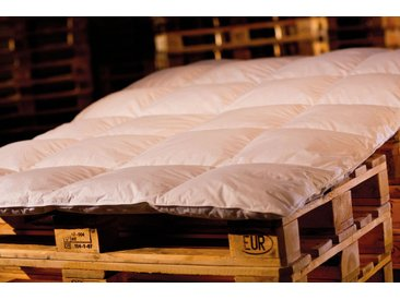 Premium Sommerdecke / Bettdecke 200x220 600Gramm 50%Daunen / 50%Federn Serie Moon
