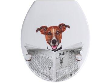 WC-Sitz Daily Dog