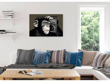 Bild Schimpanse Monkey II