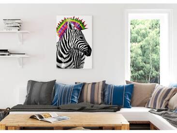 Bild Zebra Punk