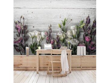 Vliestapete Tulpen-Rose Shabby