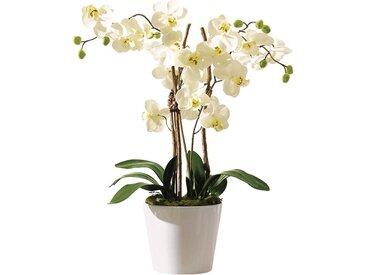 "Kunstpflanze Orchideentopf Elegance"""