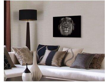 Bild Löwenkopf