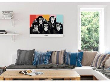 Bild Schimpansen II