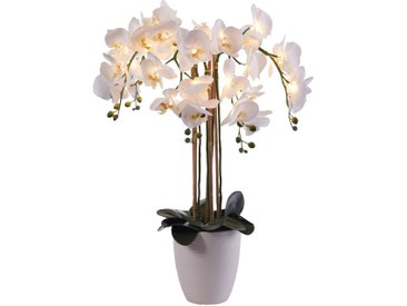 LED-Kunstblume Orchidee weiß bonprix