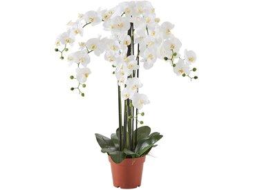 Kunstblume XXL Orchidee weiß bonprix