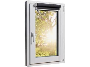 Fensterrollo Duorollo mit Sichtschutz und Sonnenschutz inkl. Klemmfixfunktion und Montagematerial Grau 80 x 160