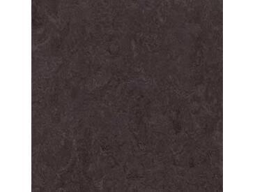 Forbo Marmoleum Fresco 3872 Volcanic Ash (2 mm) Linoleum online kaufen!