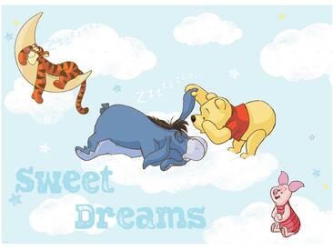 Fototapete no. 1396   Disney Tapete Winnie Puuh Kindertapete Cartoons Tigger Esel Ferkel Wolken Träumen blau