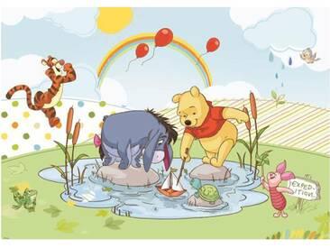 Fototapete no. 3126   Disney Tapete Winnie Puuh IAh Tigger Winnie Pooh Ferkel Kindertapete Cartoon bunt