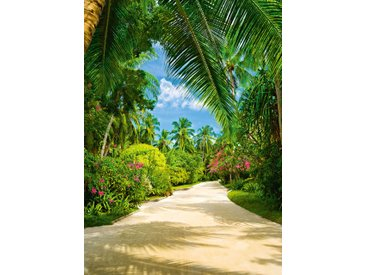 "Fototapete W438 ""Tropical Pathway"""