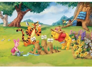 Fototapete no. 1656   Cartoon Tapete Disney Winnie Puuh Tigger Ferkel Garten Bäume bunt