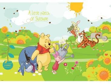 Fototapete no. 2116   Cartoon Tapete Disney Winnie Puuh Ferkel Tiger IAah Rabbit Sonne Blumen Kindertapete bunt