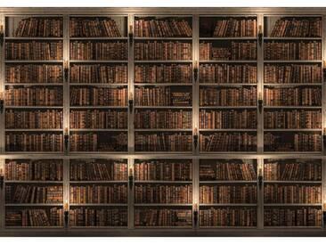 Fototapete no. 1785   Vliestapete Sonstiges Tapete Regal Bücher Bibliothek Vintage braun