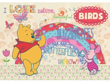 Fototapete no. 1123   Disney Tapete Winnie Puuh Kindertapete Cartoon Natur Schmetterling Regenbogen gelb