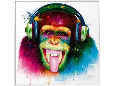 International Graphics Wandbild 70 x cm DJ Monkey
