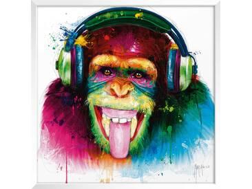 International Graphics Wandbild 30 x cm DJ Monkey