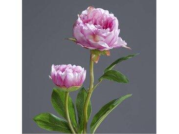 künstliche Pfingstrose Päonie mit 2 Blüten H. 60cm lavender lila DPI