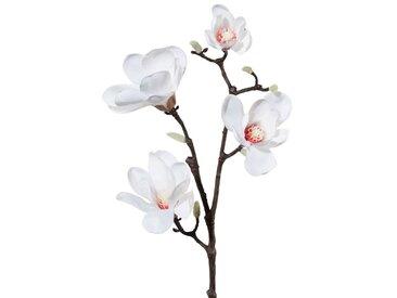 Kunstblume, künstliche Magnolie weiß mit 4 Blüten 3D print H. 85cm GASPER