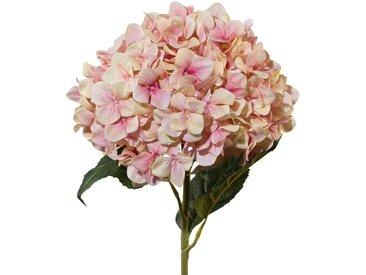 Kunstblume, künstliche Hortensie XXL rosa creme mit 3D Print H. 111cm GASPER