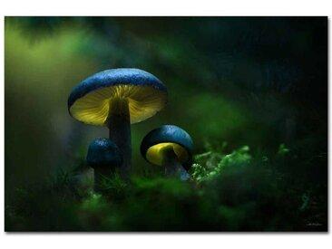 """Kollektion Wiedemann Bild """"GREEN"""", multicolour, Materialmix"""