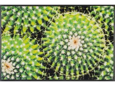 Kleen-Tex Fußmatte Spiny Green, grün, Polyamid