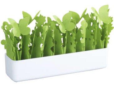 Zurbrüggen Luftbefeuchter Flora, Weiß, Polystyrol