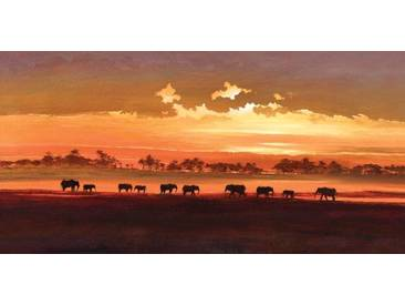 Leinwandbild Wading Elephants von Jonathan Sanders