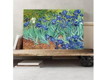 Leinwandbild Irisblumen Kunstdruck von Vincent van Gogh