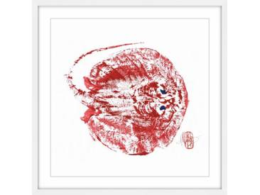 Gerahmtes Papierbild Stingray Red von Andrew Clay