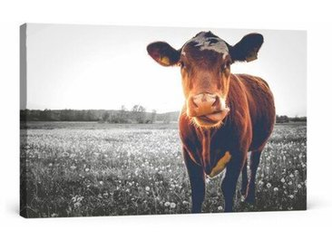Leinwandbild Kuh auf Butterblumenwiese