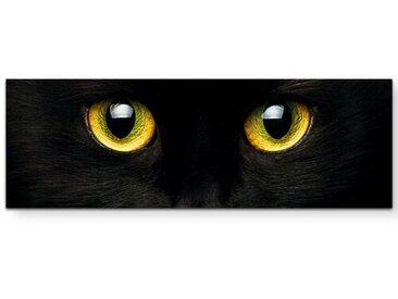 Leinwandbild Schwarze Katze – Nahaufnahme