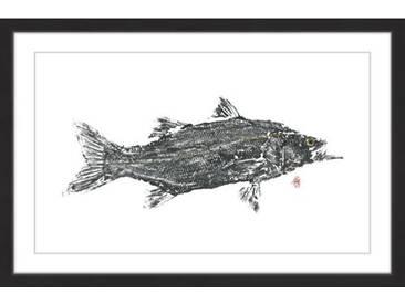 Gerahmtes Papierbild Predator von Andrew Clay
